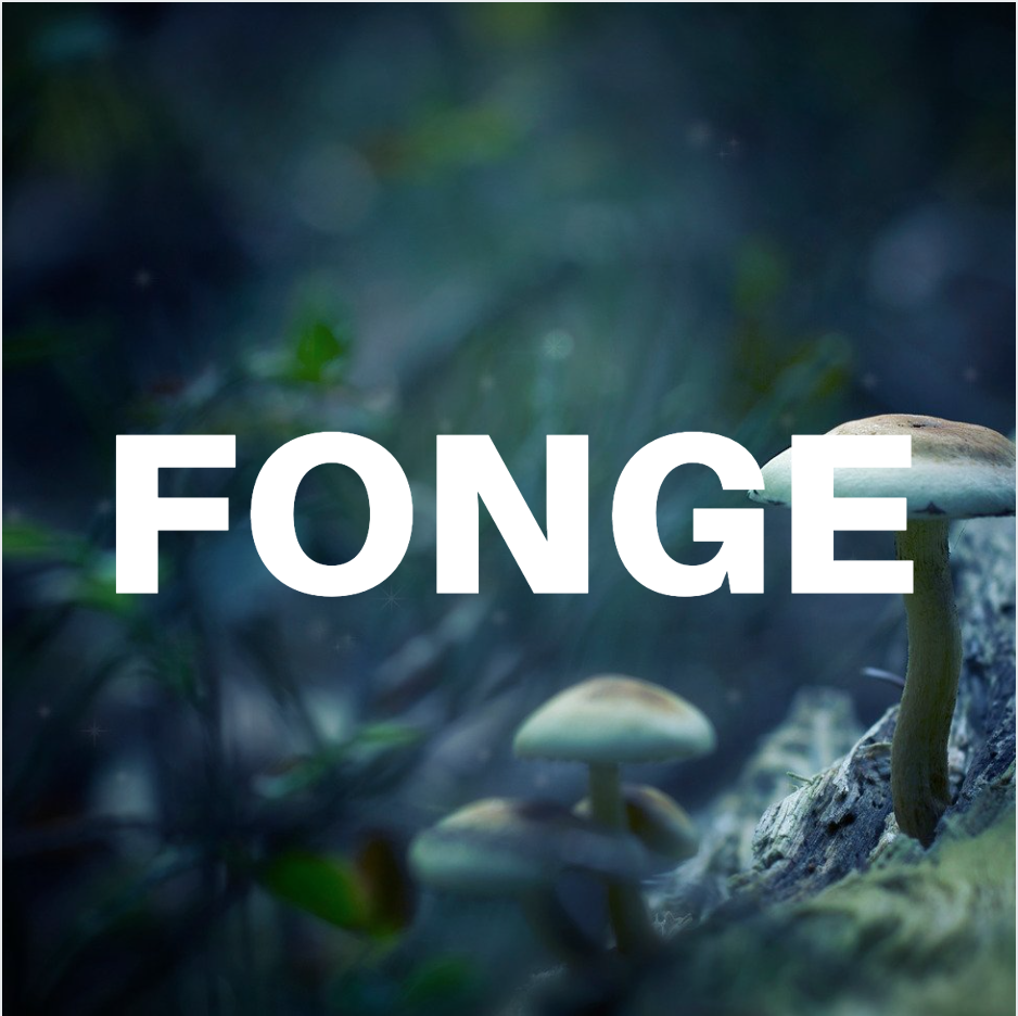 """UMSLL #2 – """"Fonge"""" (avec Xénia Maszowez)"""